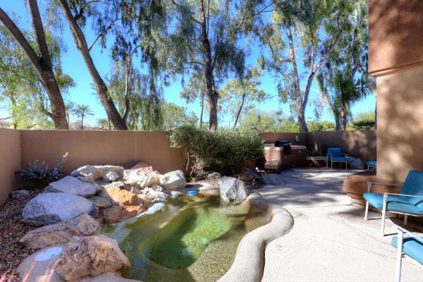 Backyard 600x400